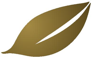 Aurefolio